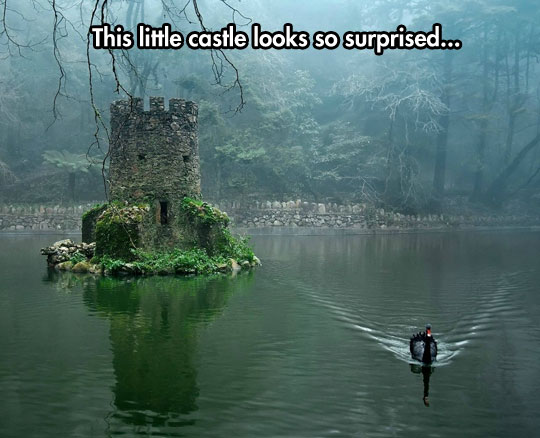 cool-tower-castle-middle-lake-duck