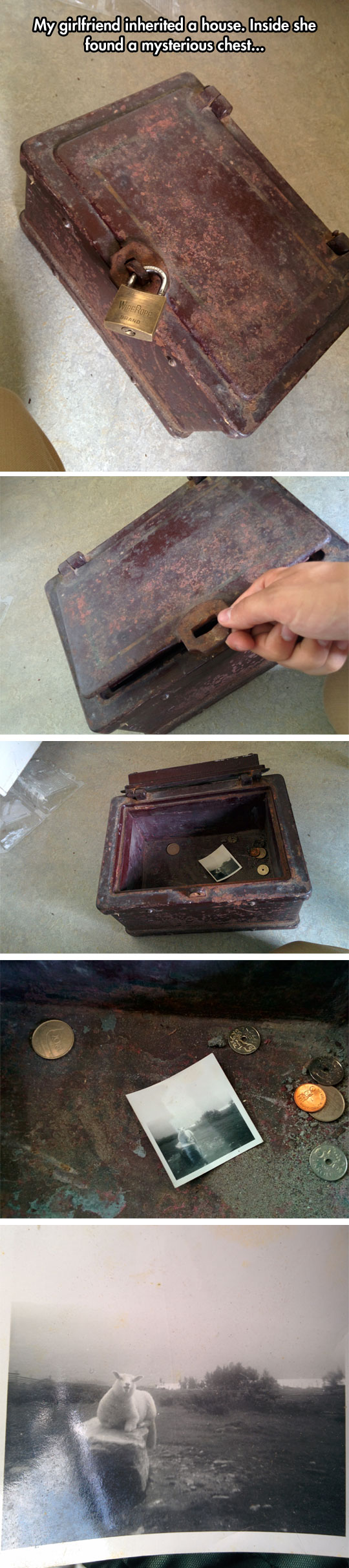 cool-treasure-chest-coins-old