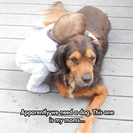 The Joy Of Having  A Dog