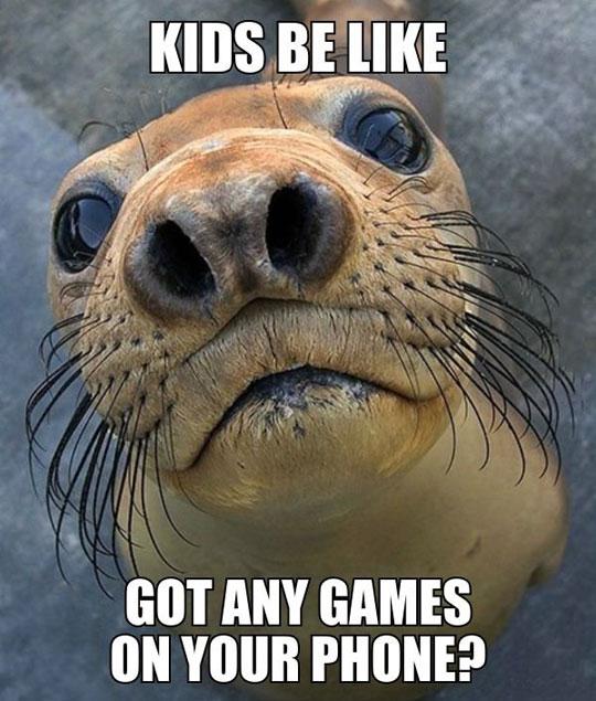 cute-seal-eyes-games-phone