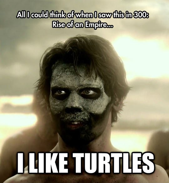 funny-300-Rise-Empire-turtles