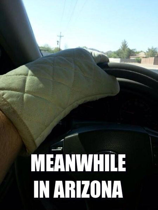 funny-Arizona-cooking-glove-car