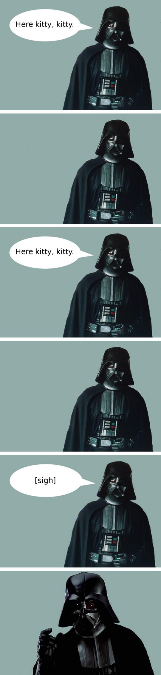Darth Vader And His Cat