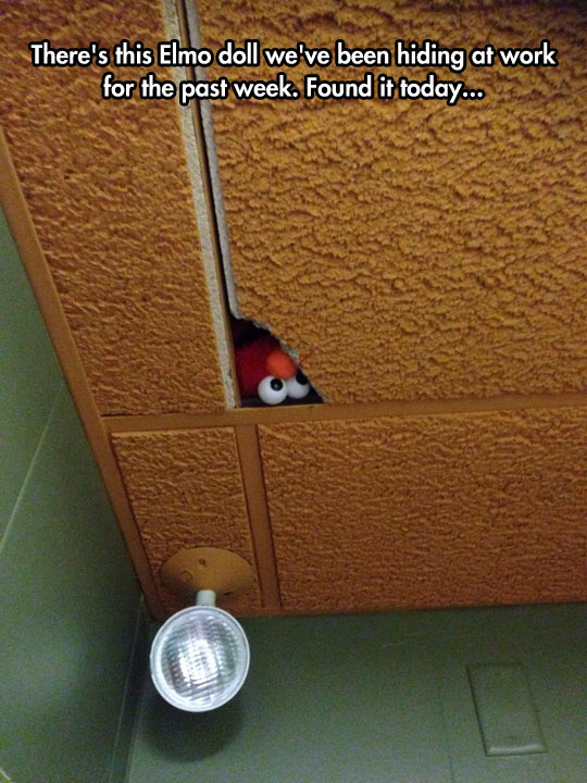 funny-Elmo-doll-roof-office