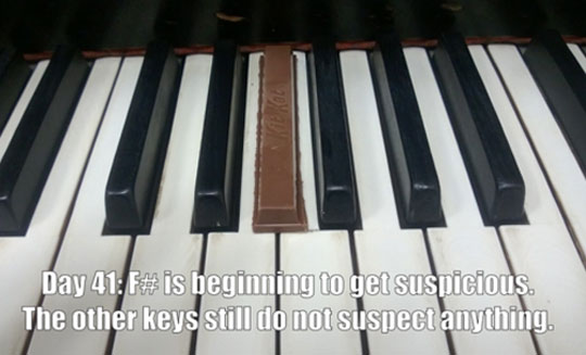 funny-Kit-Kat-key-undercover-piano