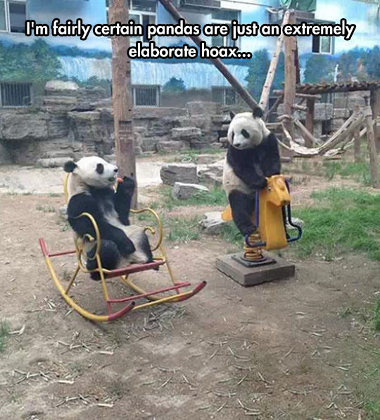 They Just Look Like People In Panda Costumes