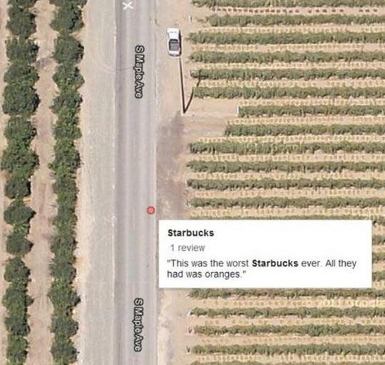 funny-Starbucks-orange-field-road