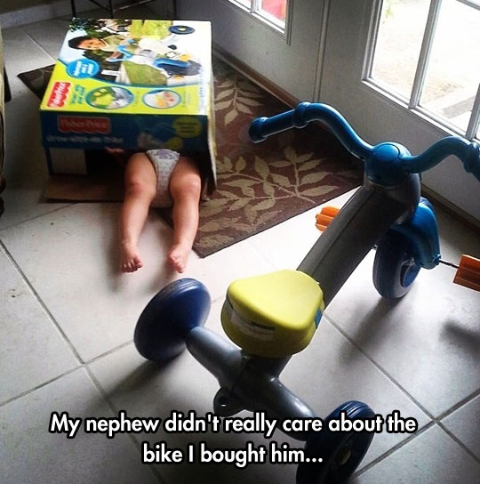 funny-baby-inside-box-playing-tricycle