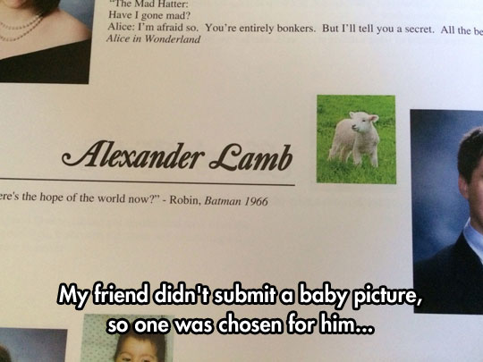 funny-baby-picture-lamb-friend