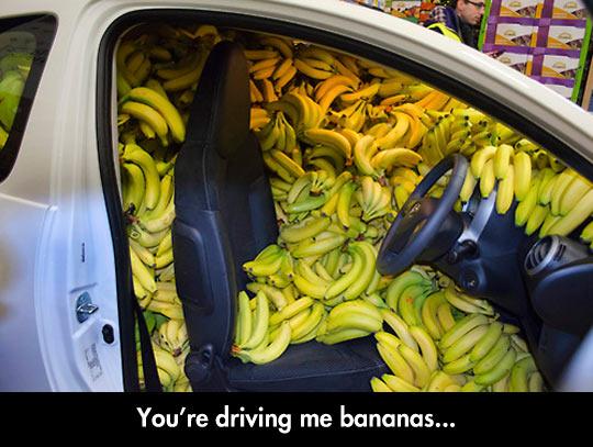 funny-car-banana-full-drive