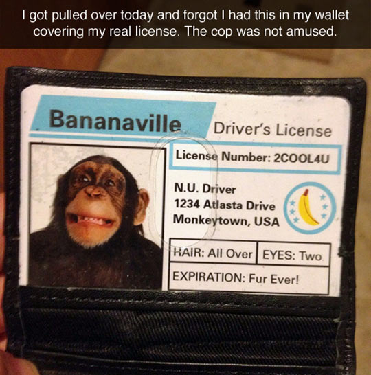 Bananaville's Driver