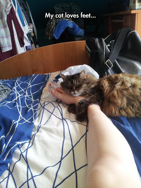 Feet Hugger
