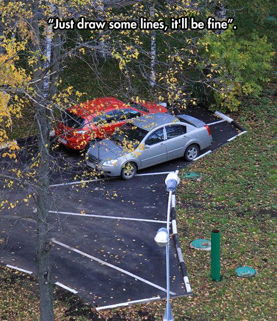 funny-crooked-parking-lines-forest
