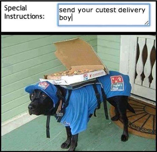 A Cute Delivery Boy