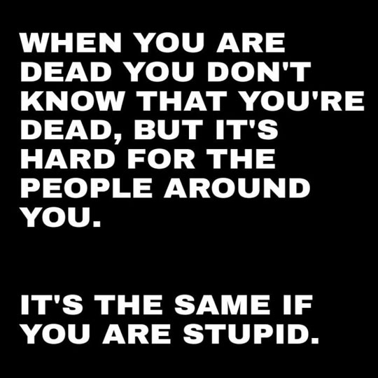 funny-dead-stupid-comparison