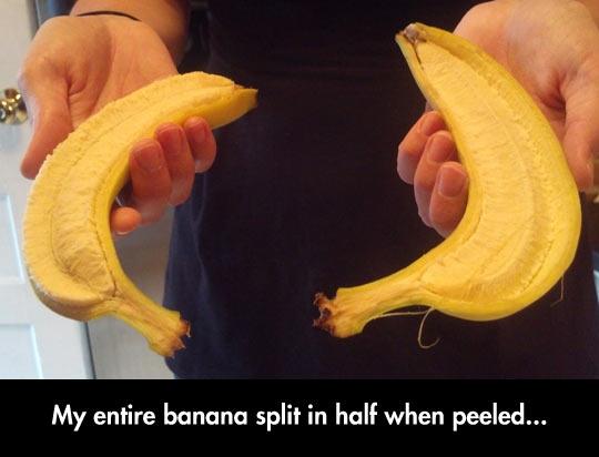 Literal Banana Split
