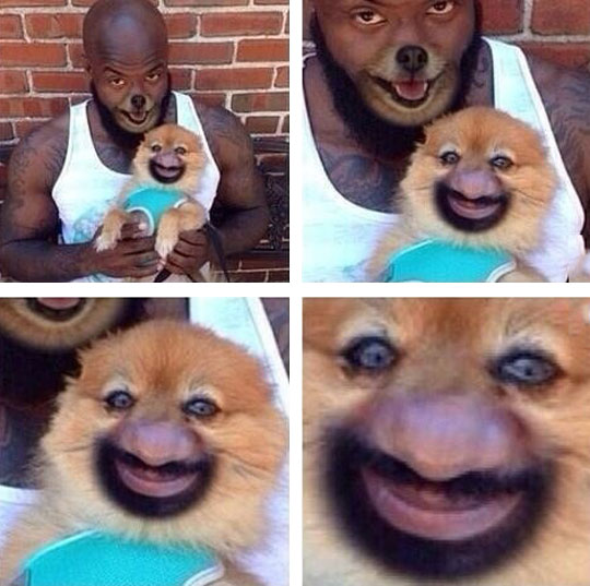 When Face Swaps Go Absolutely Wrong