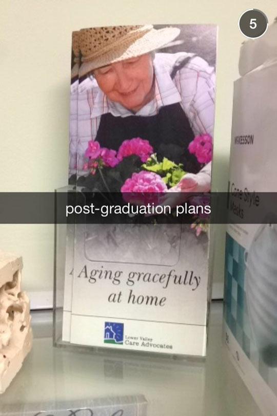 funny-flyer-retirement-home-post-graduation