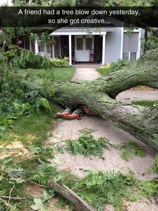 funny-friend-house-tree-fall-down