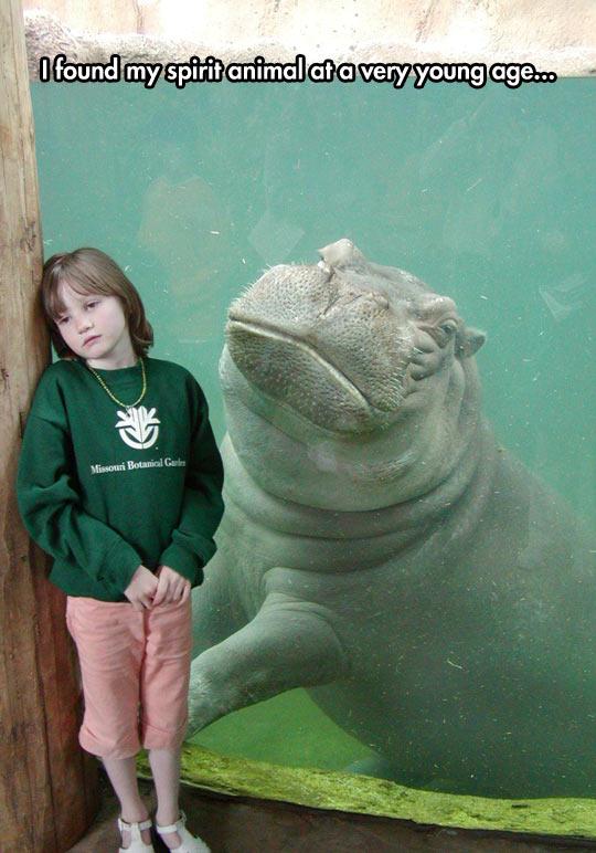 funny-girl-hippopotamus-zoo-sad