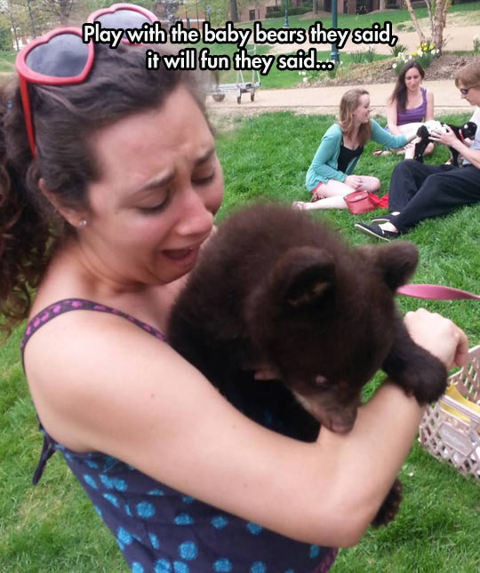 It's All Fun And Games Until Someone Gets Mauled By A Tiny Bear