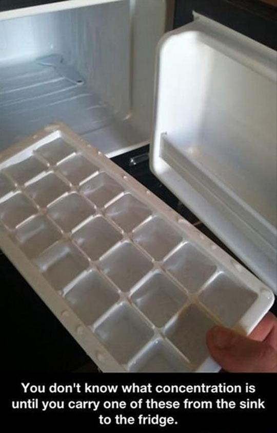 funny-ice-cube-tray-fridge