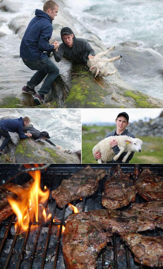 funny-kid-saving-lamb-river-barbecue