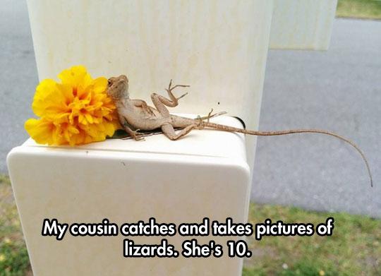funny-lizard-flower-posing