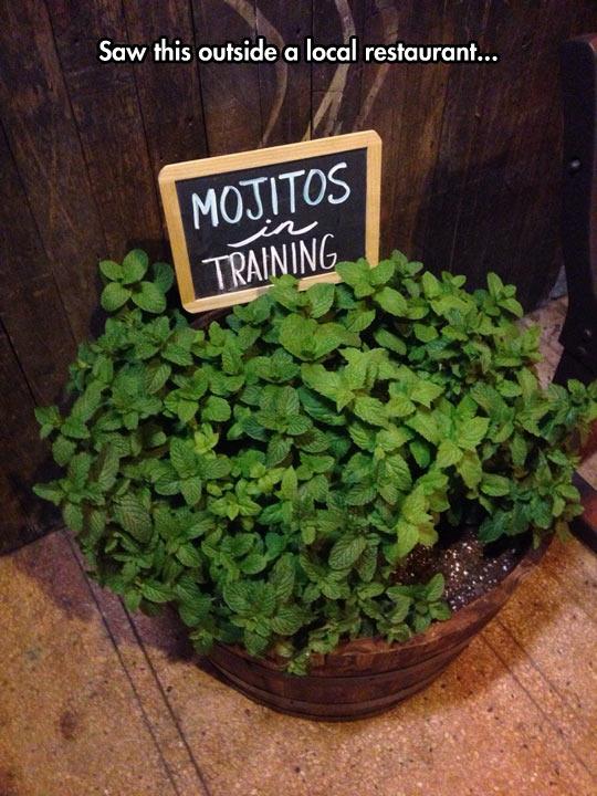 funny-mojitos-training-local-restaurant