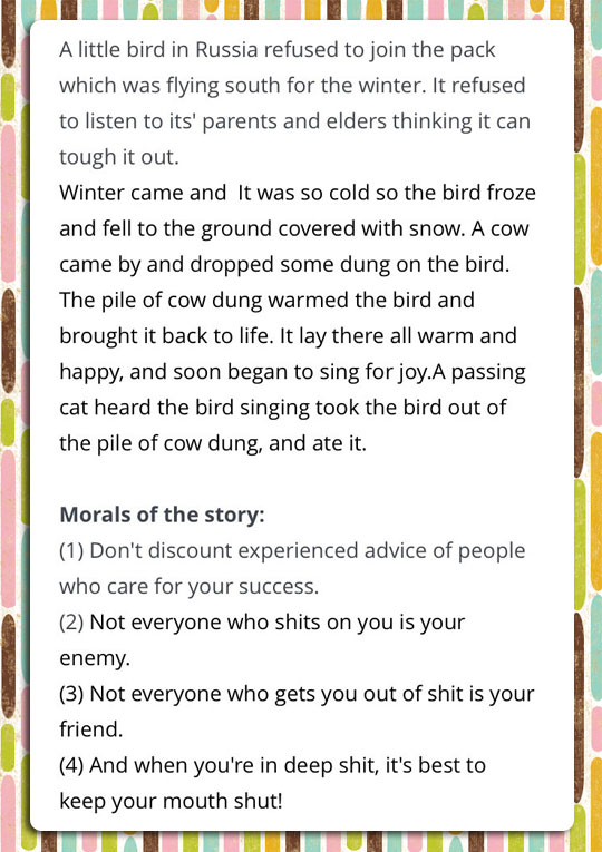 funny-moral-story-bird-road