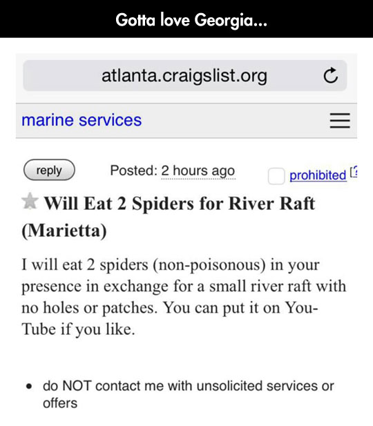 funny-offer-eat-spiders-river-draft