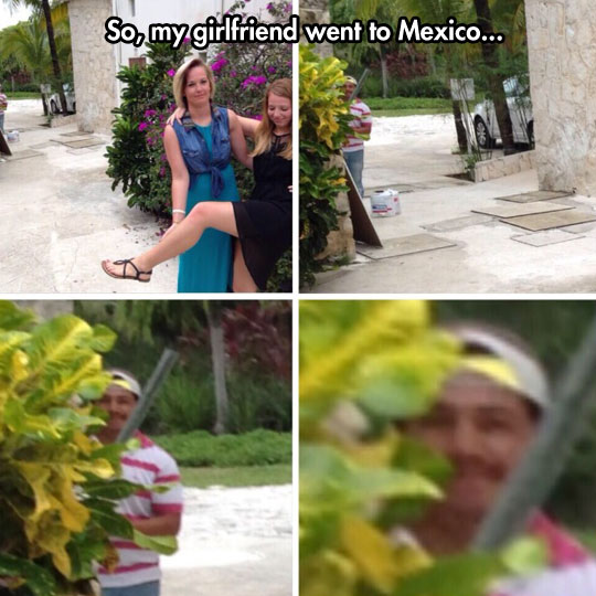 funny-picture-gardener-peeking-plants