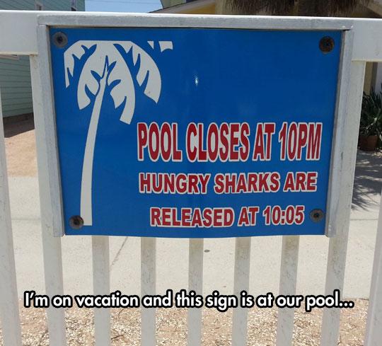 funny-pool-sign-close-shark-warning