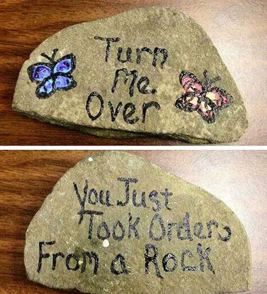 funny-rock-orders-turn-over