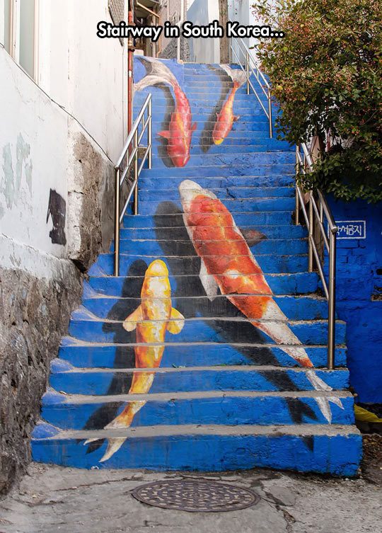 funny-stairs-fish-painting-steps