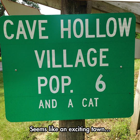 funny-town-sign-village-population-cat
