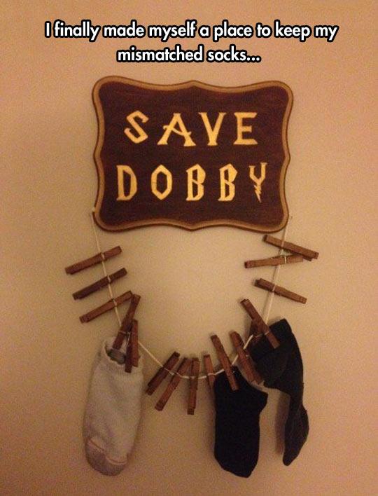 SAVE DOBBY!