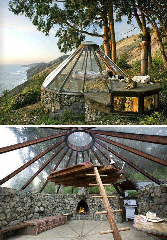 cool-glass-house-forest-wood-rustic