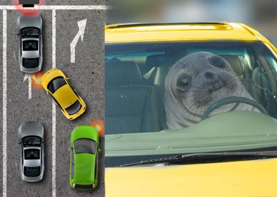 Traffic Awkwardness