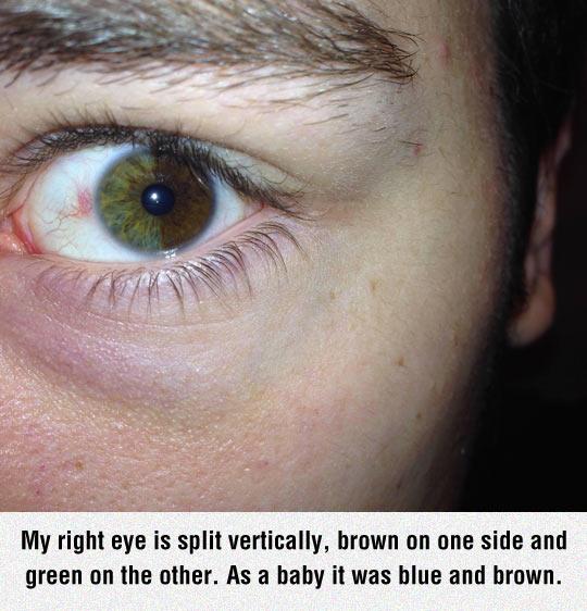 cool-two-colors-eye-split
