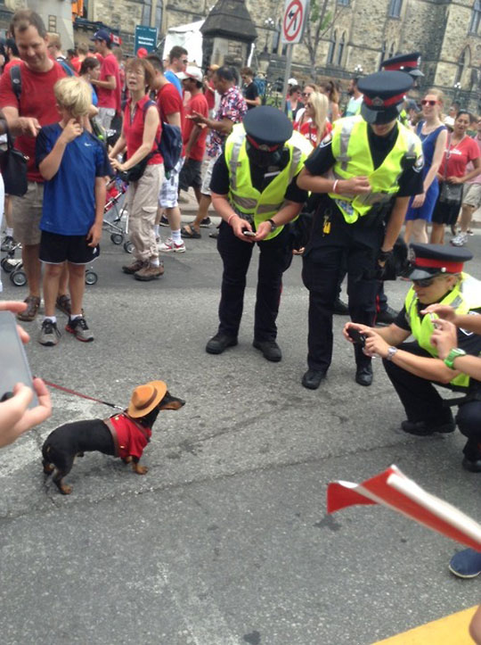 Canadian Police On The Job
