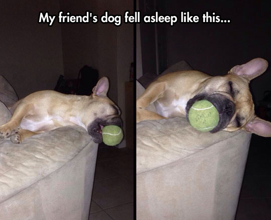 The Ball Will Always Be Mine