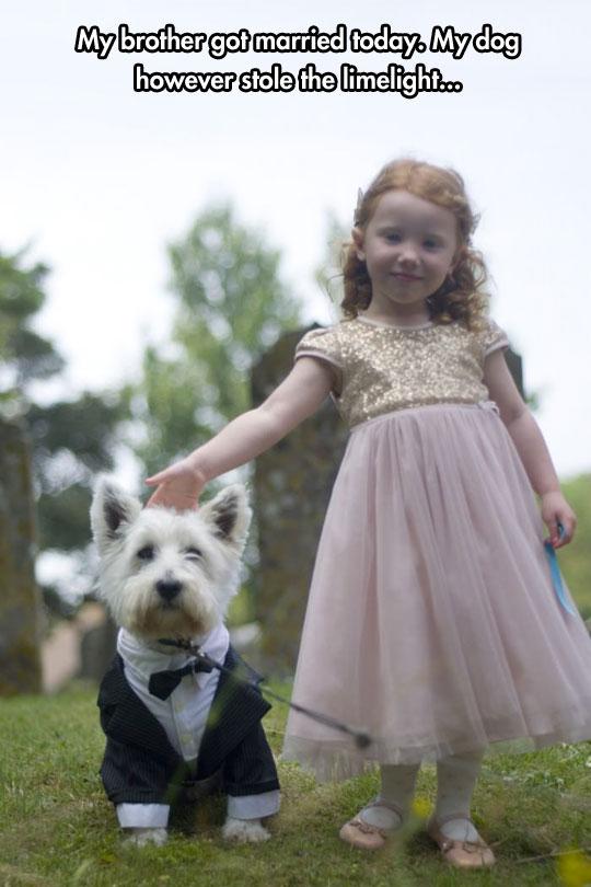 The Cutest Wedding Attendant