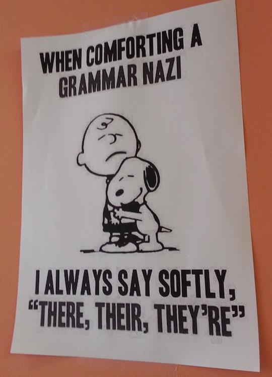 funny-Charlie-Brown-grammar-comforting