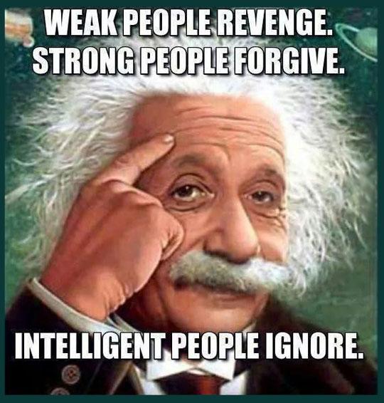 funny-Einstein-quote-revenge-ignore