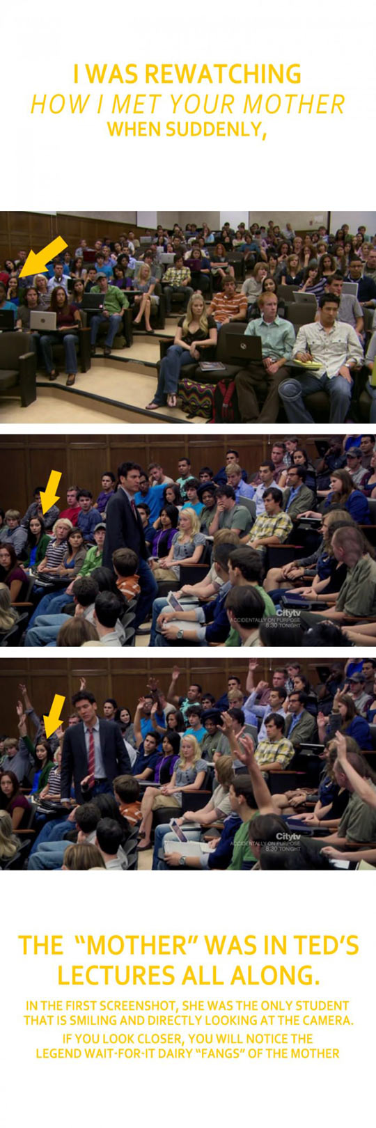 funny-HIMYM-class-Ted-mother