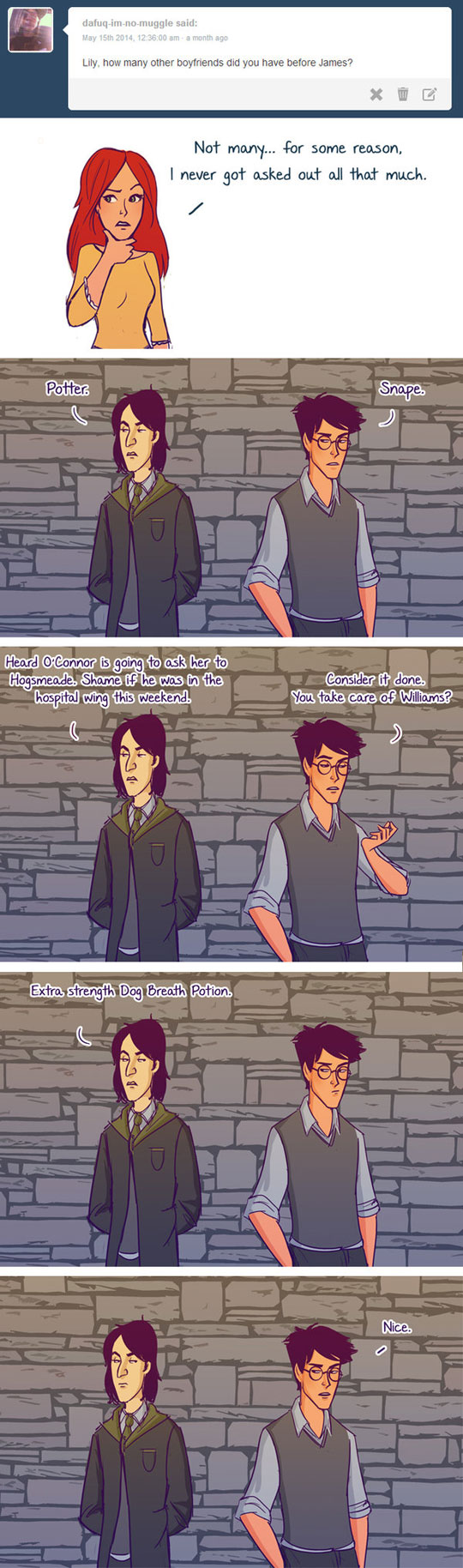 This Definitely Happened In The Potter Universe