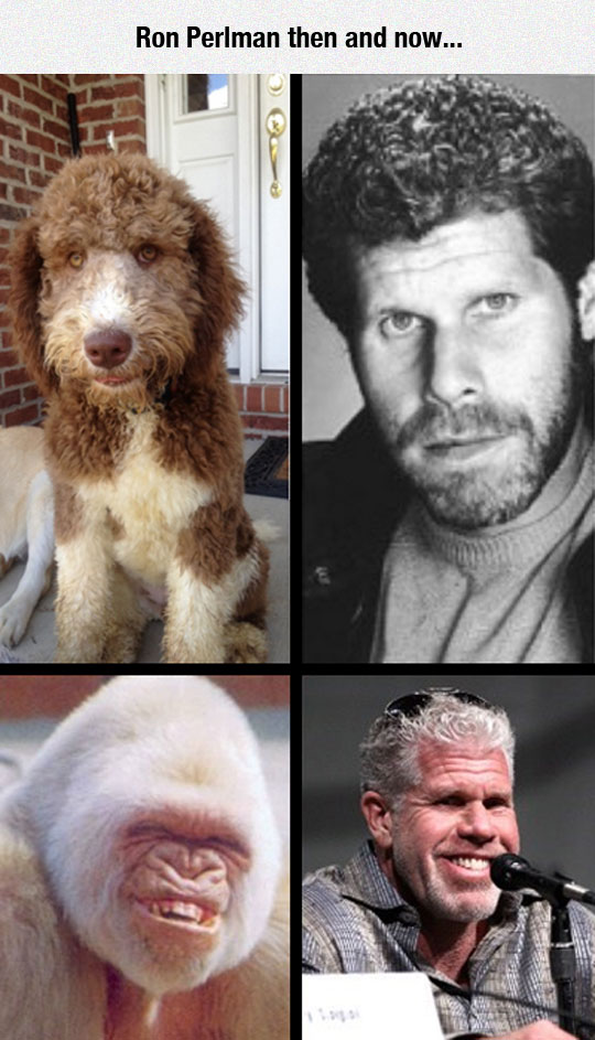 Ron Pearlman Has Changed
