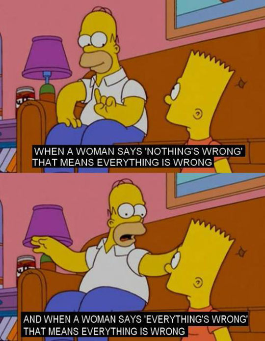 funny-Simpsons-Bart-Homer-woman-wrong
