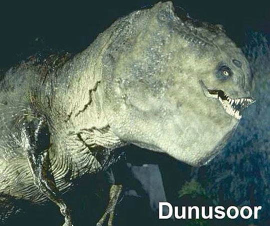 Meet The Dunusoor